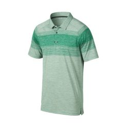 Oakley Owens Golf Polo Shirt - Parakeet
